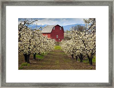 Red Barn Spring Framed Print by Mike  Dawson