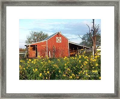Red Barn With Wild Sunflowers Framed Print