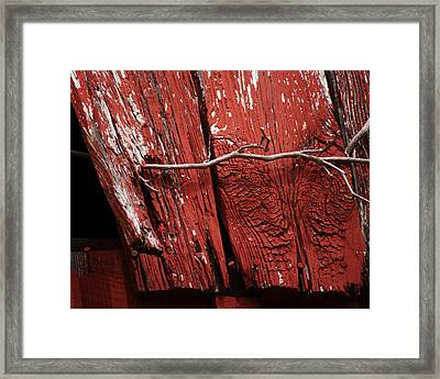 Framed Print featuring the photograph Red Barn Wood With Dried Vine by Rebecca Sherman