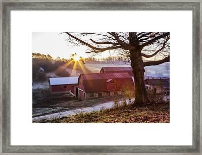 Red Barns At Dawn Framed Print by Debra and Dave Vanderlaan