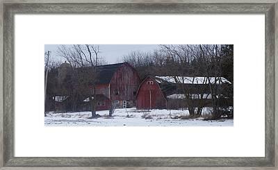 Red Barns Framed Print