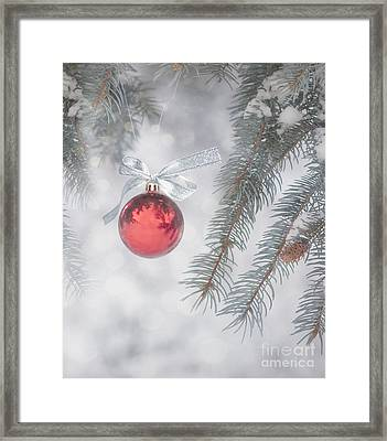 Red Bauble Framed Print