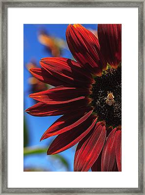 Red Be There Framed Print