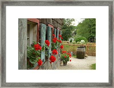 Red Beauties Framed Print