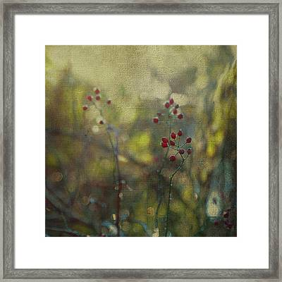 Red Berries On Green After Frost Framed Print