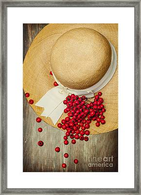 Red Berries Framed Print