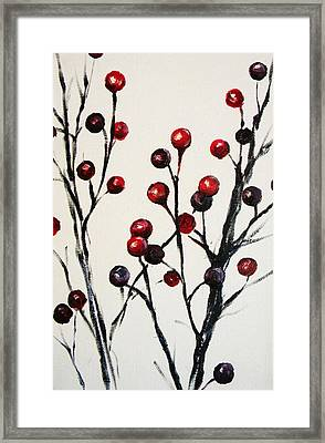 Red Berry Study Framed Print by Rebekah Reed