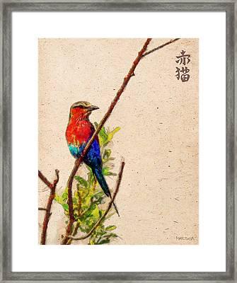 Red Bird Framed Print by Marina Likholat