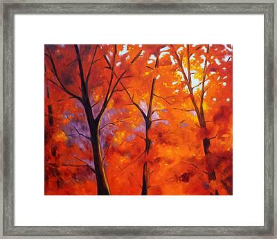Red Blaze Framed Print by Nancy Merkle