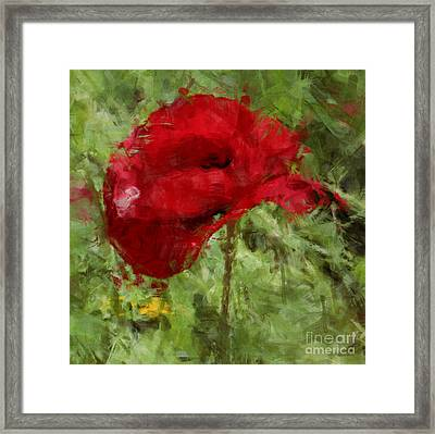 Framed Print featuring the photograph Red Bloomers by Julie Lueders