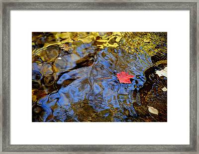 Red Blue And Gold Framed Print