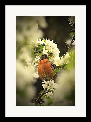Complimentary Colours Earth Tones Framed Prints