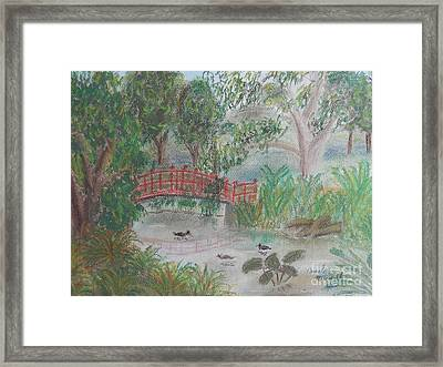 Red Bridge At Wollongong Botanical Gardens Framed Print