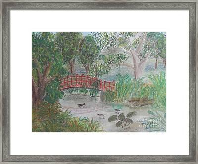 Red Bridge At Wollongong Botanical Gardens Framed Print