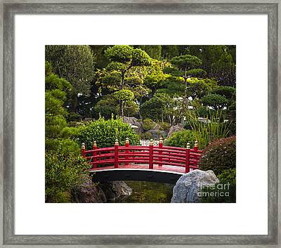 Red Bridge In Japanese Garden Framed Print by Elena Elisseeva