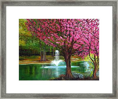 Red Bud Tree Framed Print