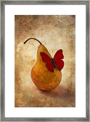 Red Butterfly On Pear Framed Print