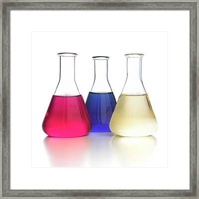 Red Cabbage Ph Indicator Framed Print by Science Photo Library
