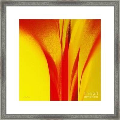Red Calla Lily Against The Sun Framed Print by Andee Design