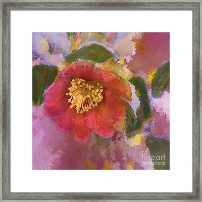 Red Camelia In A Winter Coat Framed Print by Terry Rowe