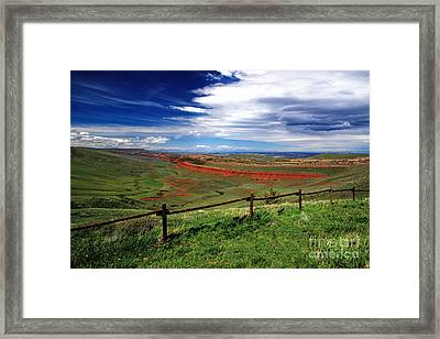 Red Canyon Wyoming Framed Print