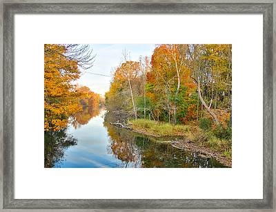 Framed Print featuring the photograph Red Cedar Fall Colors by Lars Lentz