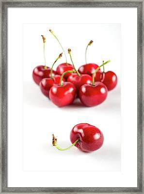 Red Cherries Framed Print