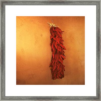 Red Chili Peppers Framed Print by Ann Powell