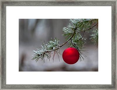 Red Christmas Ball Branch Framed Print by Terry DeLuco
