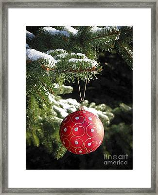 Red Christmas Ball On Fir Tree Framed Print