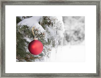 Red Christmas Ornament On Icy Tree Framed Print by Elena Elisseeva