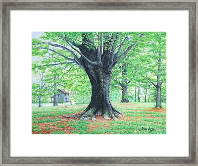 Framed Print featuring the painting Red Clay Tennessee by Mike Ivey