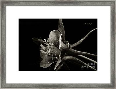 Red Columbine In Black And White Framed Print by Karen Slagle