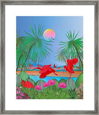 Red Corocoro -  Framed Print