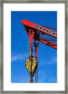 Red Crane - Photography By William Patrick And Sharon Cummings Framed Print by Sharon Cummings