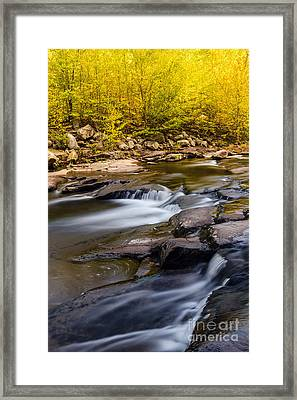 Red Creek D80000615 Framed Print by Kevin Funk