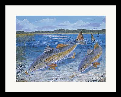 Rapala Framed Prints