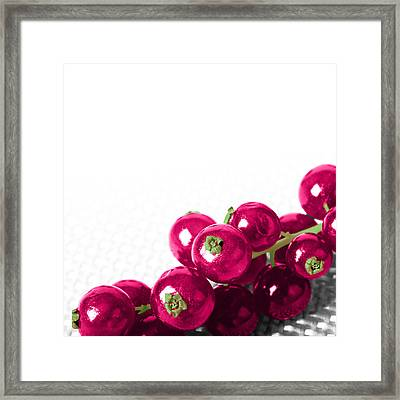 Red Currants Framed Print by Nicole Neuefeind