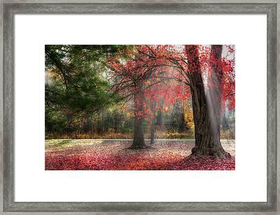 Red Dawn Framed Print by Bill Wakeley