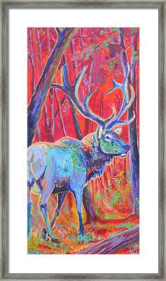 Red Dawn Framed Print by Jenn Cunningham