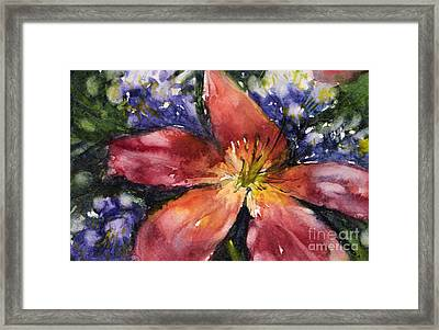 Red Daylily Framed Print