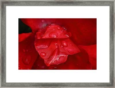 Red Desire Framed Print