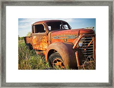Framed Print featuring the photograph Red Diamond by Steven Bateson