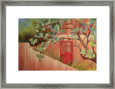 Red Door In Adobe Wall Framed Print