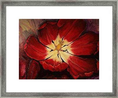 Red Downside Framed Print by Jean Cormier