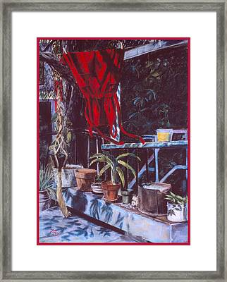 Red Dress Framed Print by Dan Terry