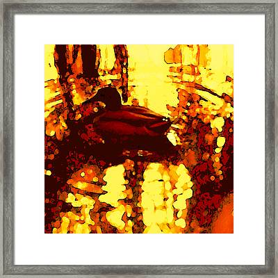 Red Duck Lake 6 Framed Print by Amy Vangsgard