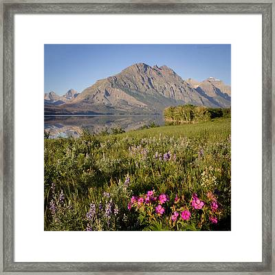 Framed Print featuring the photograph Red Eagle Mountain by Jack Bell