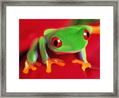 Red Eye Tree Frog Framed Print