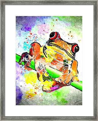 Red Eyed Tree Frog Grunge Framed Print by Daniel Janda